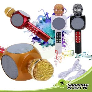 Wster ws-1816 Wireless Microphone And Speaker For Kids