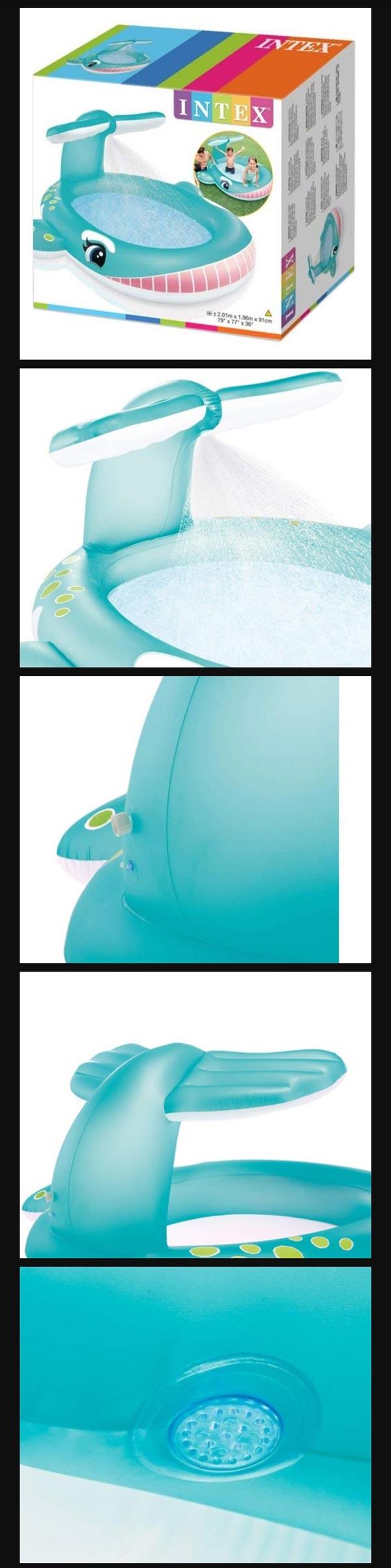 Whale Intex Pool